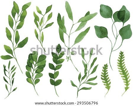A set of vector watercolor leaves and branches. Lovely design elements to make your own patterns, laurels and compositions. Great for wedding or invitations. Vector watercolor. Vectorized painting. - stock vector