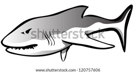 A simple great white shark that seems a little hungry and angry.