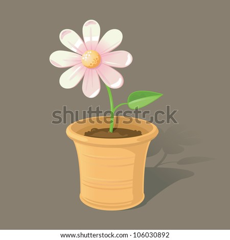 A single pink daisy in a terracotta plant pot.