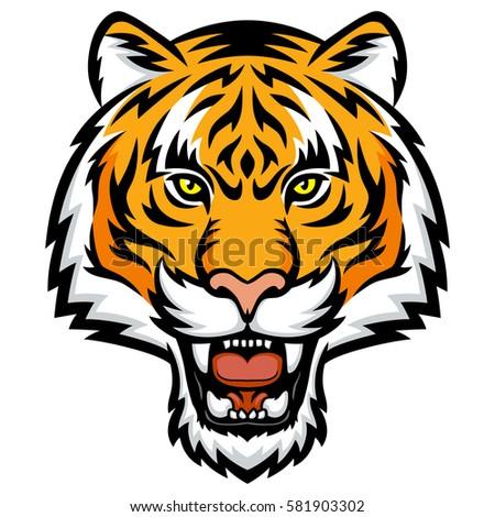tiger anger vector illustration tiger head stock vector