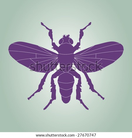 A vector illustration of fly silhouette.