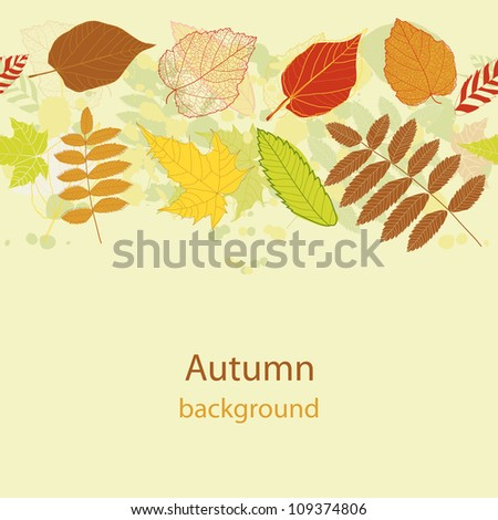 Abstract autumn beauty background with your text for wallpaper, texture, poster, pattern, label, emblem, sign, sybol, frame, decoration, grungy ornament, illustration, border, brochure vector eps 8 - stock vector