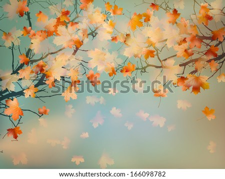 Abstract autumn yellow leaves background. And also includes EPS 10 vector - stock vector