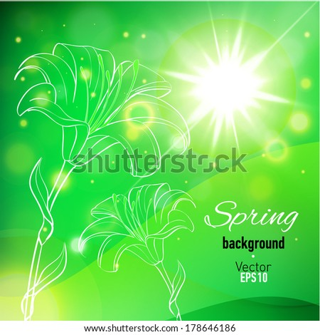 Abstract background for spring time with lily flowers. Vector illustration.