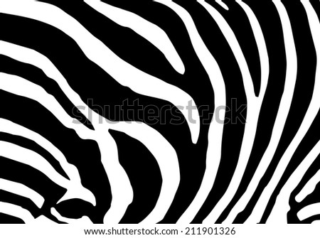 Abstract background skin of a zebra, white and black color