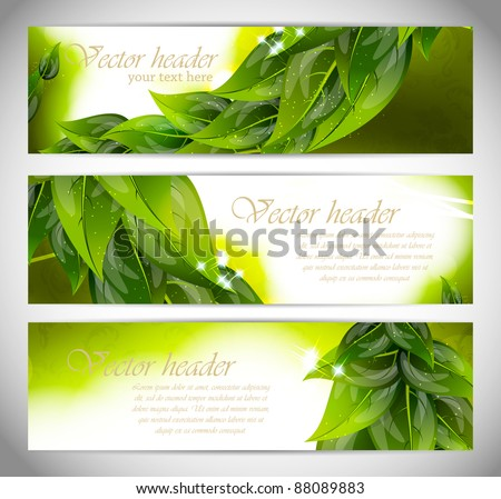 Abstract bright banners with leaves - stock vector