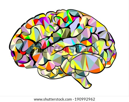 Abstract colored  human brain background. Vector illustration