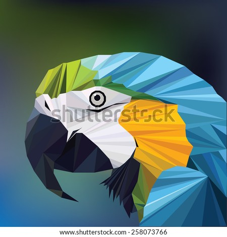 abstract colorful low polygon macaw parrot head vector illustration  - stock vector