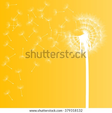 Abstract dandelion background vector illustration springtime concept