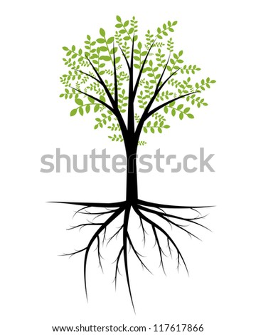 Abstract decorative tree with foliage and roots - stock vector