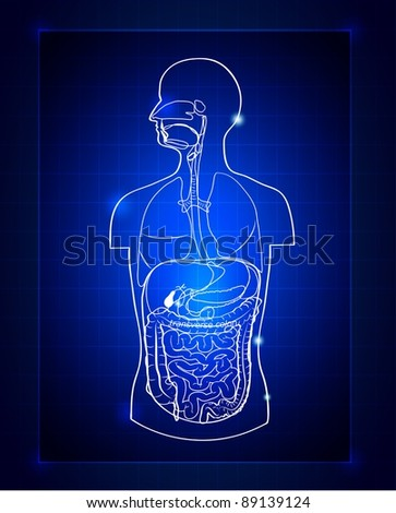 Abstract gastrointestinal system - stock vector