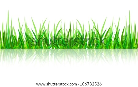 abstract green grass with reflection vector whit background - stock vector