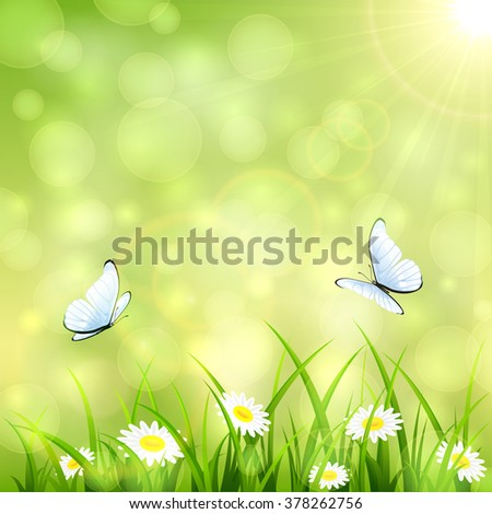 Abstract green summer background with a butterfly flying above the grass and flowers, bokeh light and sun beams, illustration. - stock vector