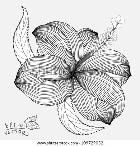 Abstract Hibiscus floral background. Element for design. EPS10 Vector - stock vector