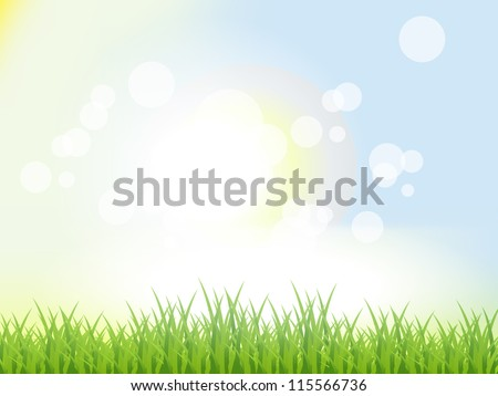 Abstract Summer Background. Beautiful Vector Illustration. Bokeh Effect. - stock vector