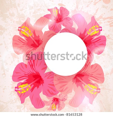 Abstract tropical background. Hibiscus flower for design. - stock vector