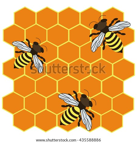 Abstract vector illustration of logo for the bee makes honey in the honeycomb closeup on background.Honey drawing consisting of label,wax,yellow bees,food,eating,animal,insect,apiary,medicine,healthy.