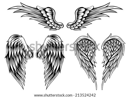 Abstract vector illustration wings set - stock vector