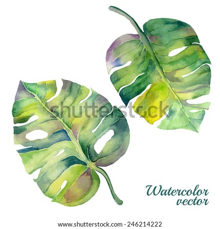 Abstract watercolor vector monstera leaves. Can be used for web pages, identity style, printing, invitations, banners, cards, leaflets. - stock vector