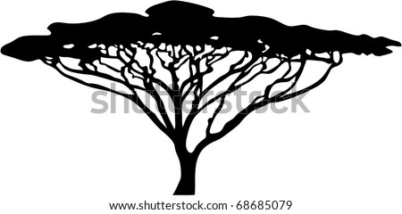acacia tree silhouette - stock vector