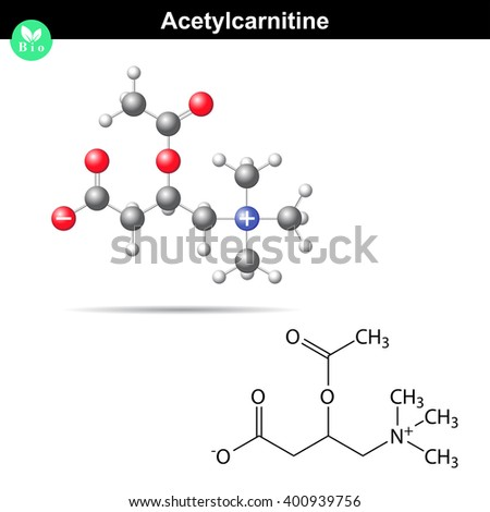 Acetylcarnitine biological molecule, 2d and 3d vector model, isolated on white background, eps 8 - stock vector