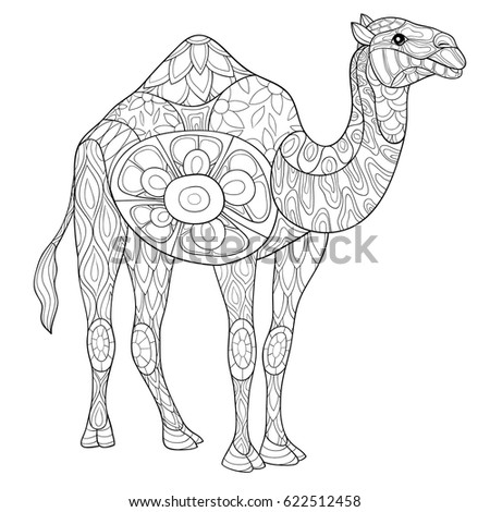 Adult Coloring Page Camel Art Style Stock Photo (Photo, Vector ...
