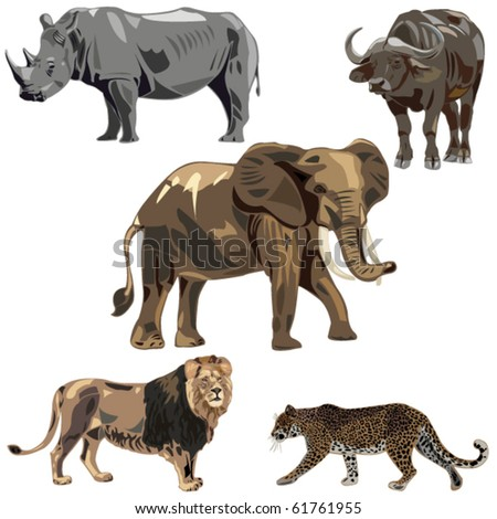 Africa's five wild beasts: elephant, rhino, buffalo, lion, leopard