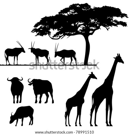 African animals, vector silhouettes - stock vector