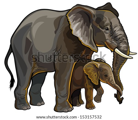 african elephant mother with baby side view vector illustration isolated on white background - stock vector
