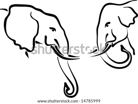 african & indian elephants