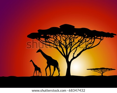 African safari theme vector illustration with giraffe and acacia tree silhouette - stock vector