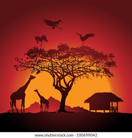 African sunset - stock vector
