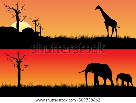 African sunset one with elephants other with a  giraffe