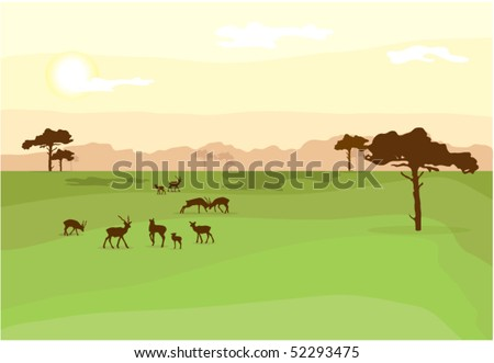 African Wildlife Background - stock vector