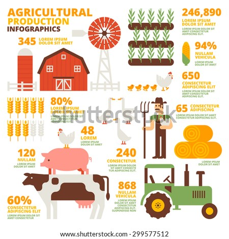 Agricultural Production Infographics - stock vector