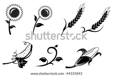 Agriculture icons - stock vector