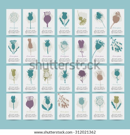 Agrimony plants collection on cards, sketch for your design. vector illustration - stock vector