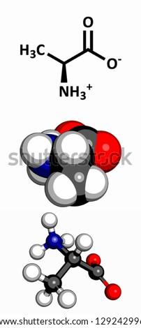 Alanine (Ala, A) amino acid, molecular model. Amino acids are the building blocks of all proteins. Atoms are represented as spheres with conventional color coding: hydrogen (white), carbon (grey) etc - stock vector