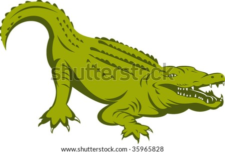 Alligator about to attack - stock vector