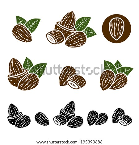 Almonds set. Vector  - stock vector