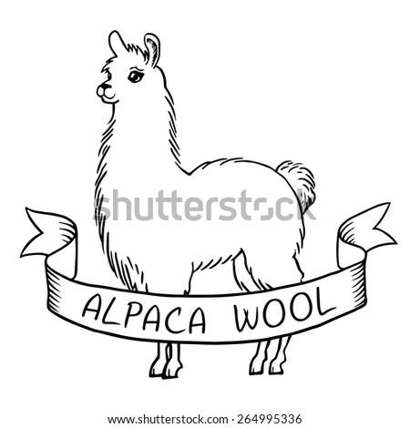 Alpaca wool vintage hand drawn logo with ribbon - stock vector