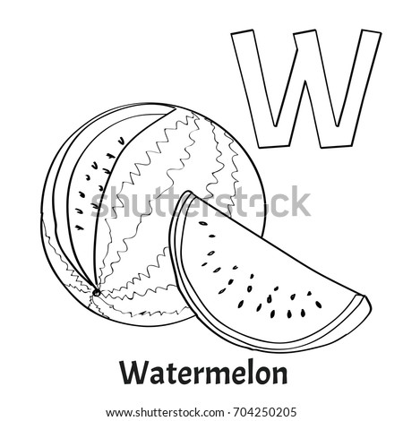 alphabet letter w coloring page watermelon stock vector 704250205