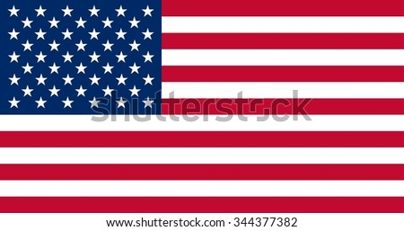 America Flag - stock vector