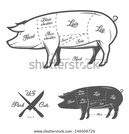 American (US) cuts of pork - stock vector