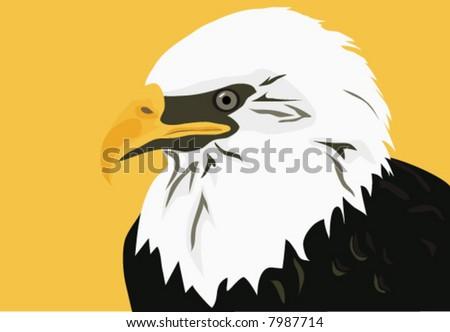 Americas National Bird Bald Eagle Symbol Stock Vector 7987714