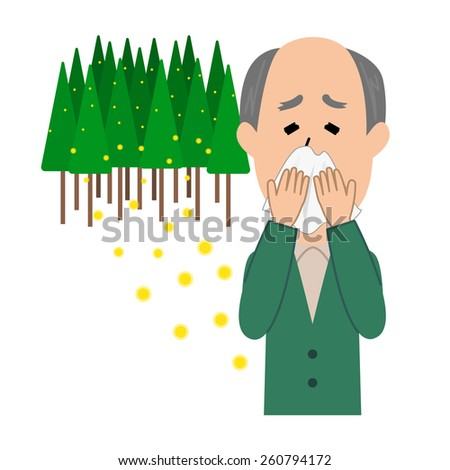 An elderly man blowing nose, allergy caused by cedar pollen, vector illustration - stock vector