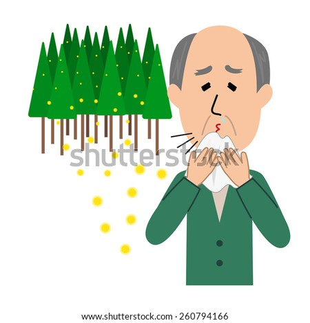 An elderly man sneezing, allergy caused by cedar pollen, vector illustration - stock vector