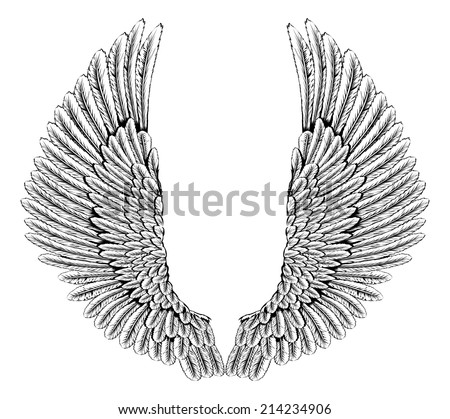 Eagle wings stock images royalty free images vectors for Eagle wings tattoo