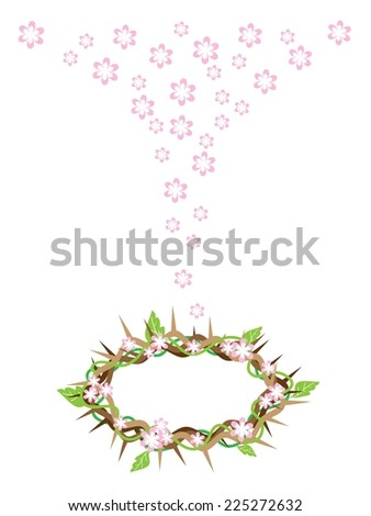An Illustration of Crown of Thorns with Fresh Green Leaves and Falling Pink Flower from The Holy Land, Symbolizing Resurrection of Jesus.  - stock vector