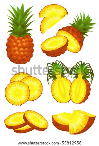 Ananas piece set, vector illustration - stock vector